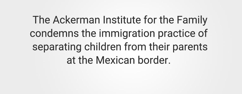 Immigration Statement